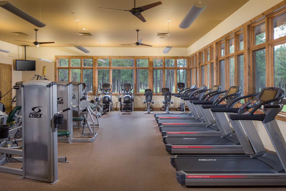 Foresthighlands - 18
